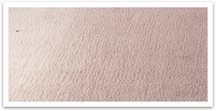 Carpet Cleaning In Syracuse Upholstery Cleaning Rug